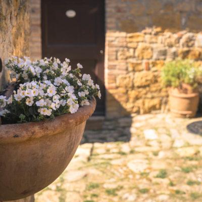 WEB Cretaiole Spring 2020-7022